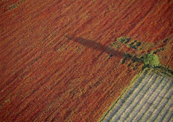 Рукотворные ландшафты. Увидено сверху. Изображение № 20.
