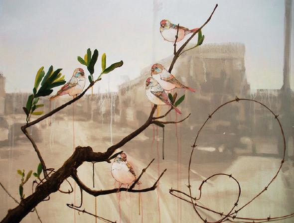 Живая природа и цивилизация: взгляд Сейджа Вана. Изображение № 5.