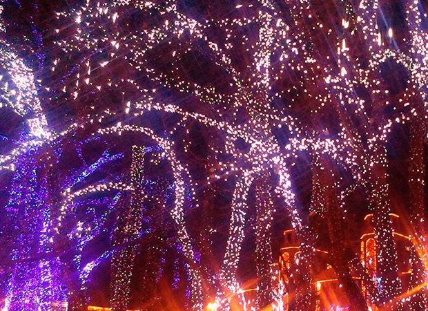 Светодиодная подсветка деревьев как наглядная модель Вселенной. Изображение № 6.