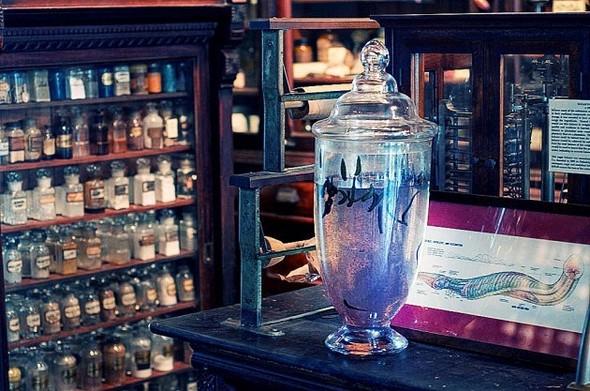 Аптека - музей в Новом Орлеане. Изображение № 14.