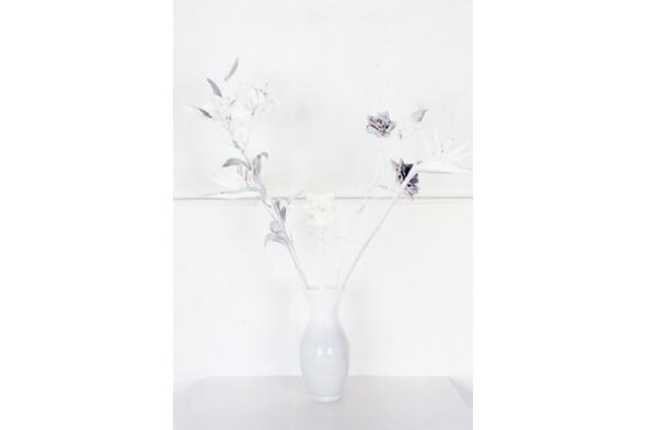 Jaap Scheeren and Hans Gremmen Fake Flowers in Full Color. Cерия, состоящая только из фотографий неживых объектов. Изображение № 30.