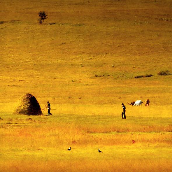 Загадочно-прекрасный мир болгарской фотохудожницы Магдалены Ванли. Изображение № 5.