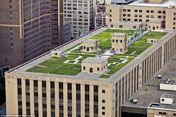 Крыши Нью-Йорка. Изображение № 9.