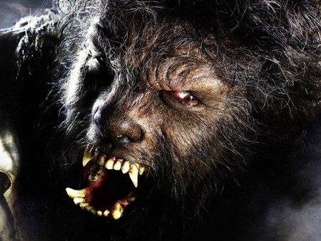 «Человек-Волк». Изображение № 2.
