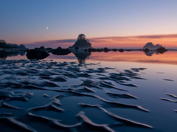 Cape Alava, Washington. Изображение № 8.