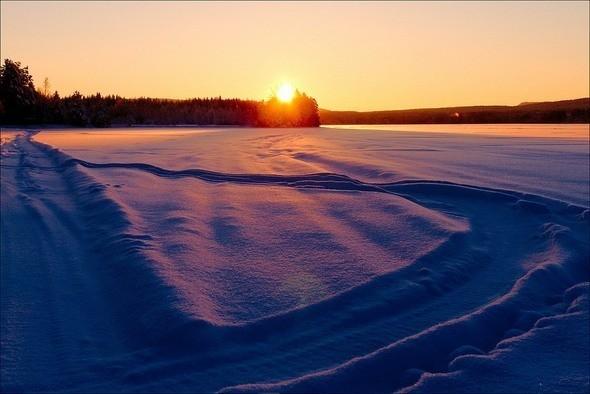 Изображение 20. Выходные в шведском лесу.. Изображение № 20.