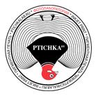 Офисный словарь: Студия фотопечати Ptichka Dy. Изображение № 1.
