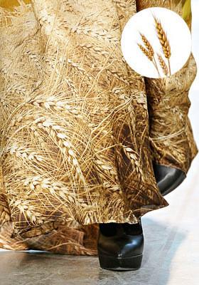 Цветной: 35 принтов из коллекций FW 2011. Изображение № 65.