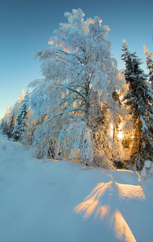 By Kари Liimatainen (самая шикарная зима). Изображение № 1.