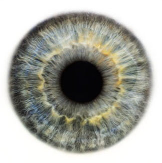 Фотограф Rankin — Eyescapes. Изображение № 16.