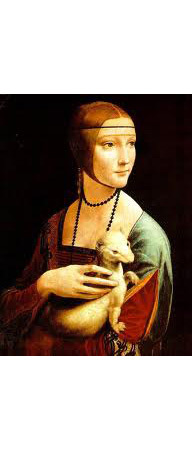 Картина «Дама с горностаем», Леонардо да Винчи, 1489-1490. Изображение № 23.