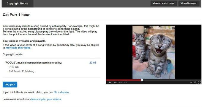 YouTube принял мурлыканье за нарушение прав. Изображение № 1.