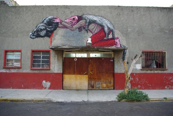 Животный стрит-арт от бельгийского граффитчика ROA. Изображение № 1.