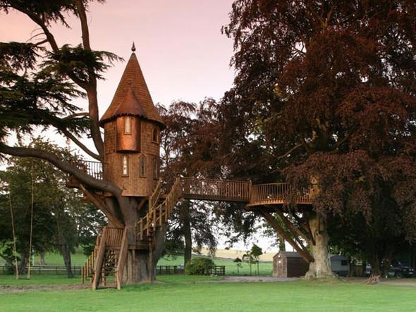Дома надеревьях отAmazon Tree Houses. Изображение № 2.