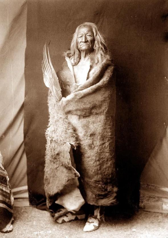 Американские индейцы. Изображение № 21.