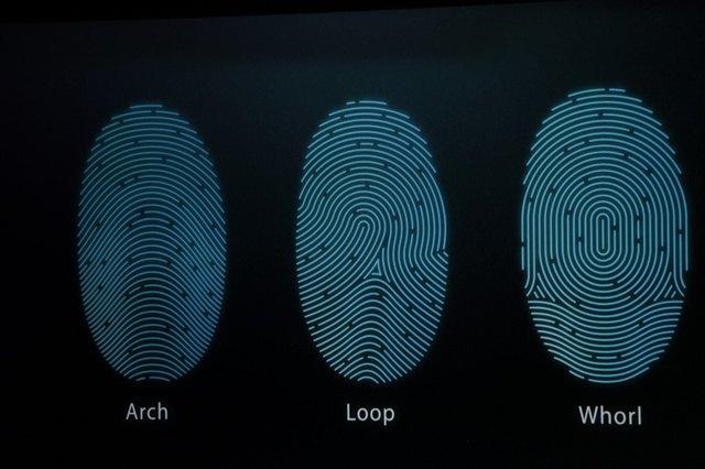 Трансляция: Apple представляет новые iPhone и другие продукты. Изображение № 8.