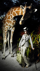 В мире животных: Герои «Мадагаскара» в мемах, рекламе и видеороликах. Изображение № 11.