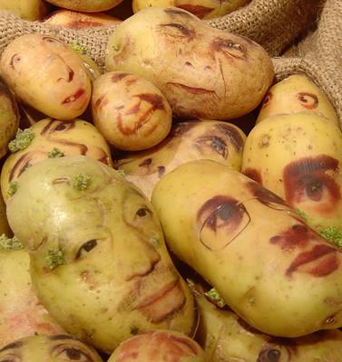 Картофельные портреты. Изображение № 4.