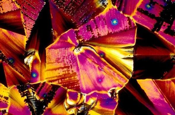Алкоголь под микроскопом. Изображение № 10.