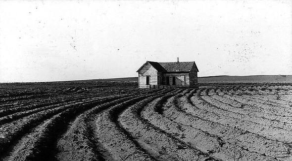 Фотографии ферм начала XX века. Изображение № 8.