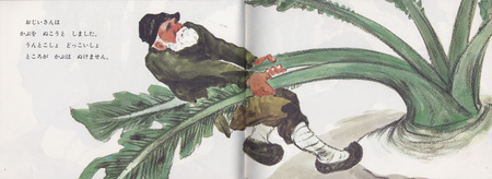 Репка пояпонски. Изображение № 7.