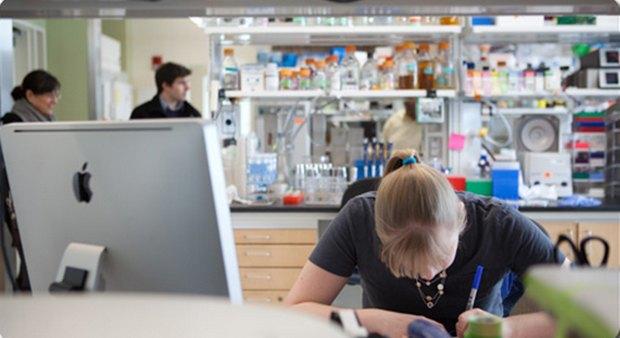 Лаборатория в MIT. Изображение № 1.