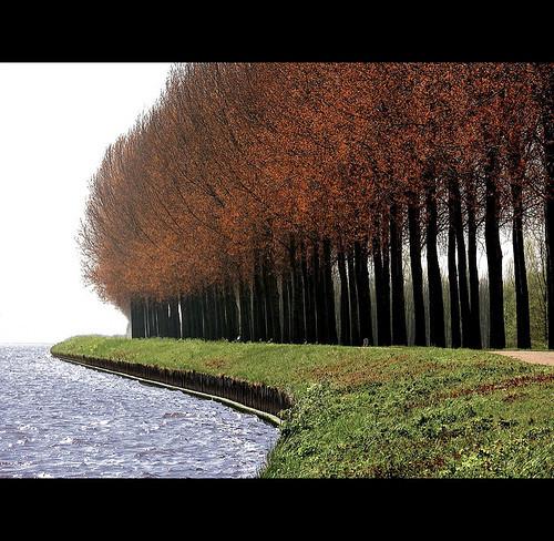 Фотография Ларса ван де Гоора. Изображение № 25.