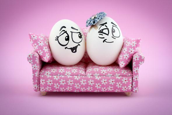 Удивительная жизнь яиц. Изображение № 31.