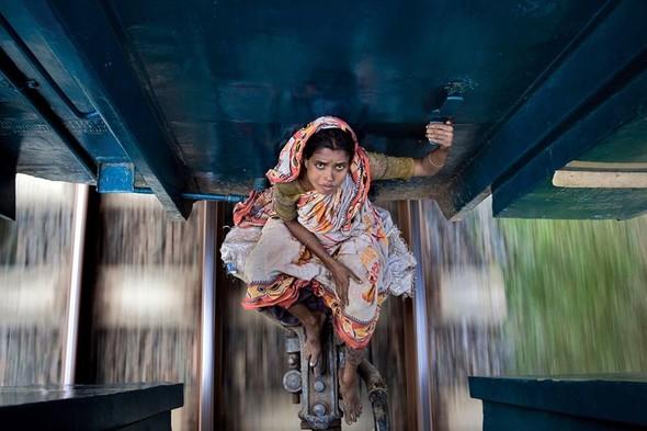 Фотоконкурс National Geographic 2010. Изображение № 15.