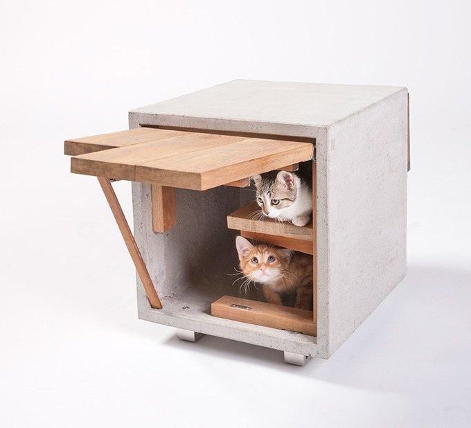 Cat Cube от Standard Architecture | Design . Изображение № 1.