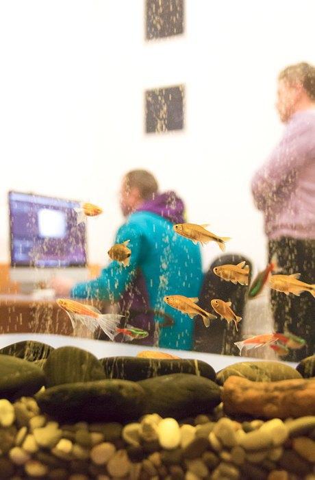 Фоторепортаж: Офис креативного агентства «Восход» в Екатеринбурге. Изображение № 16.