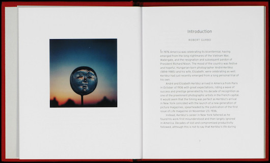 20 фотоальбомов со снимками «Полароид». Изображение №182.