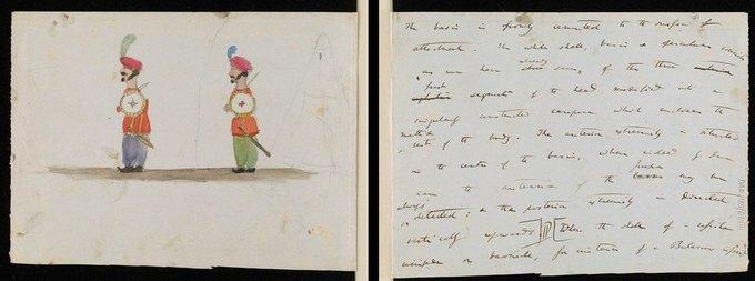 Фото: рисунки детей Дарвина на страницах «Происхождения видов». Изображение № 4.