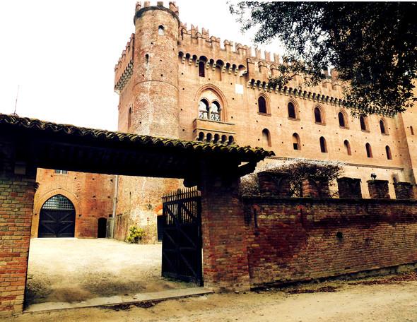 Обитаемые замки Пьемонта, где и сегодня живут графы и маркизы. Изображение № 7.
