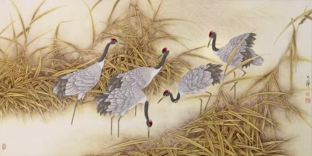 Птицы ицветы. Изображение № 30.
