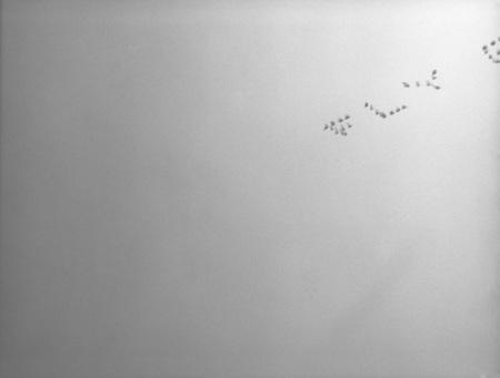 Аэрошоу – фотограф Филипп Толедано. Изображение № 9.