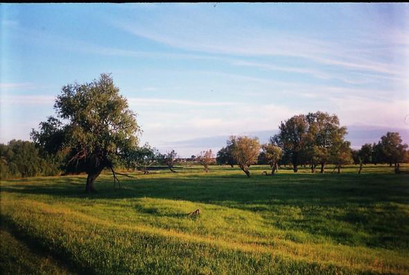 Деревня Окунёво. Изображение № 38.