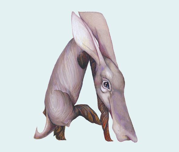 Животный алфавит. Изображение № 3.