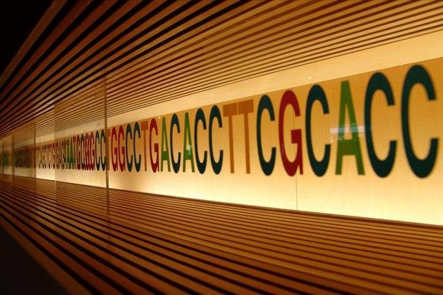 Художница создала набор для борьбы с ДНК-слежкой. Изображение № 1.