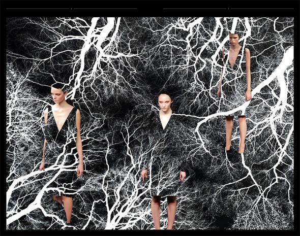 PRADA LOOKBOOK FW'09. Изображение № 2.