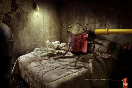 Картинки из«волшебной комнаты» чилийца Ricardo Salaman. Изображение № 29.
