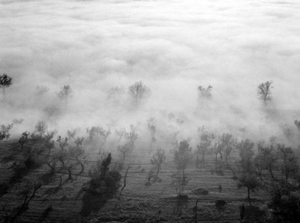 Изображение 5. Elio Ciol – черно-белый фотограф Ассизи.. Изображение № 5.