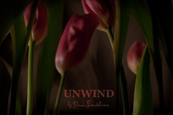 Лукбук: UNWIND by Dina Faradzheva SS'12. Изображение № 1.