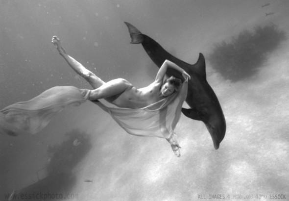 Todd Essick. Подводный мир. Изображение № 10.