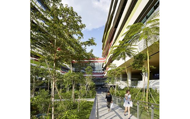 Архитектура дня: новый кампус университета в Сингапуре. Изображение № 6.