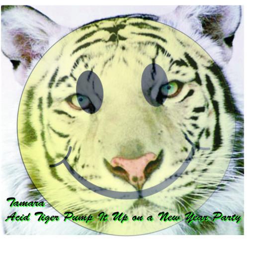 Tamara - Acid Tiger Pump It Up on a New Year Party. Изображение № 1.