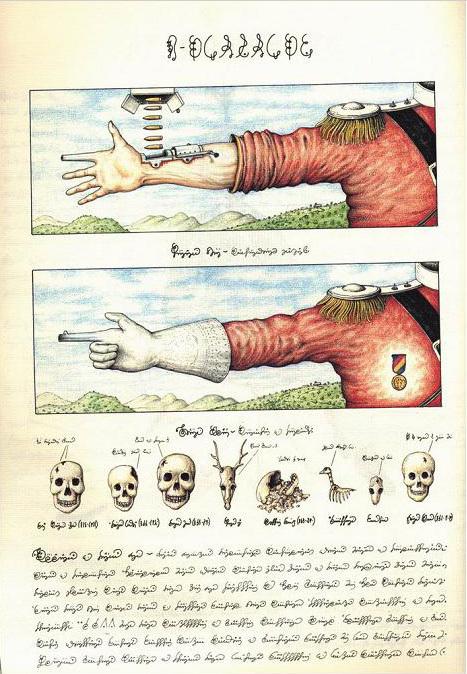 Codex Seraphinianus: книга – аномалия. Изображение № 9.