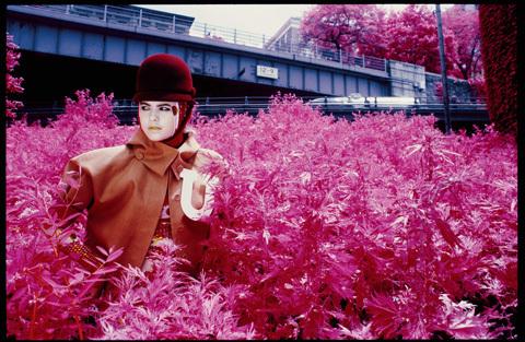 Purple fashion. Изображение № 17.