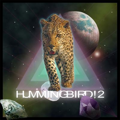 Hummingbird! 2. Изображение № 1.