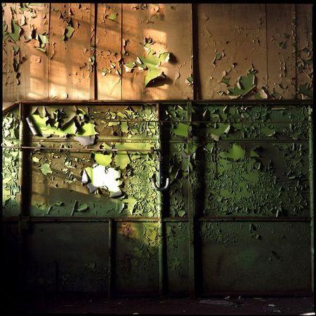 Лучшие фотографии International Photography Awards 2007. Изображение № 14.
